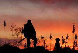 Сроки охоты на пернатую дичь по самарской области.