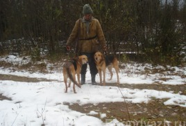 09.02.2016 года скончался наш друг-охотник Трошков Николай Дмитириевич, гончатинк.